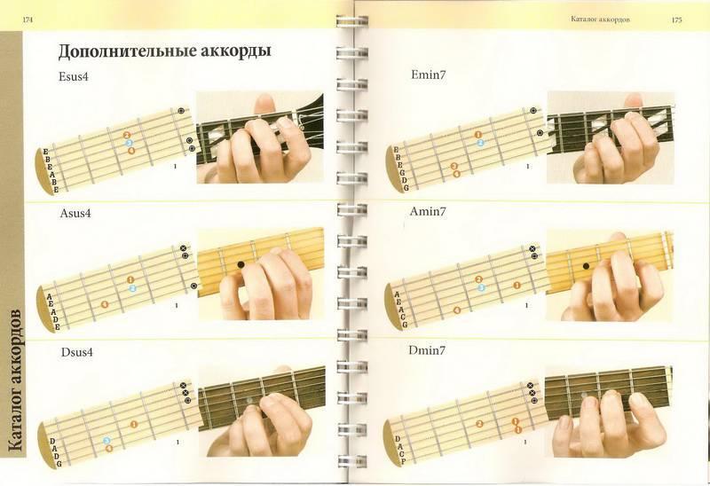 уроки игры на гитаре аккорды для теплиц системы