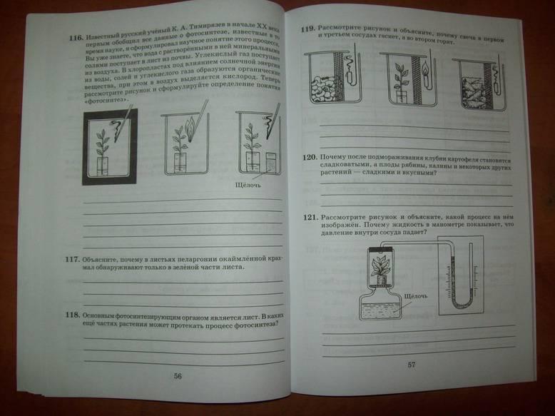 Класс рабочая тетрадь к учебнику в в